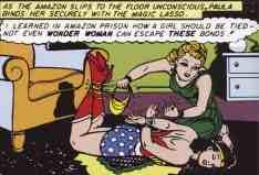 WW panel